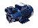 Pumpe wie PQM 70 Idrostar 230V